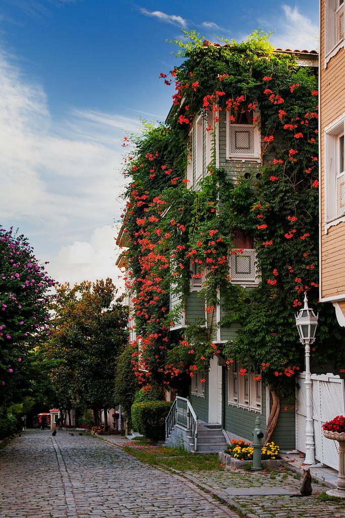 Istanbul gardens, Turkey