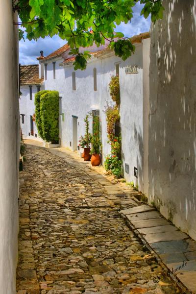 Calle del Castillo de Castellar, Andalusia, Spain