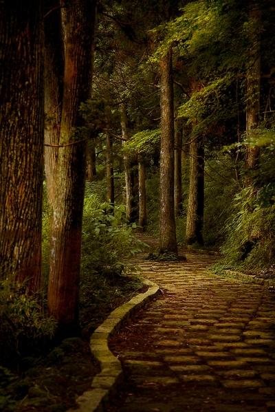 Cobblestone path, Hakone, Kanagawa, Japan