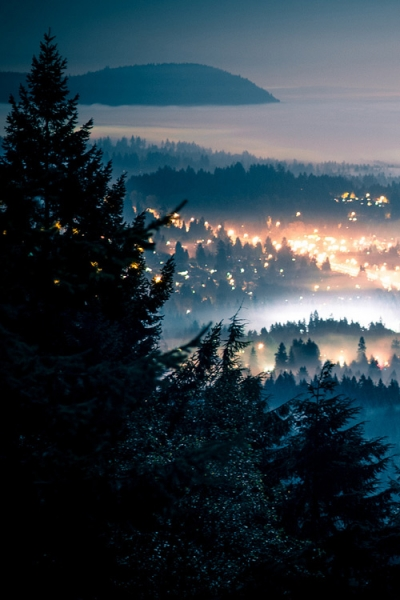 Foggy Night, Seattle, Washington