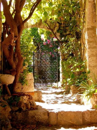 Garden Gate, Provence, France