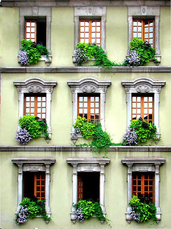 Windows, Venice, Italy