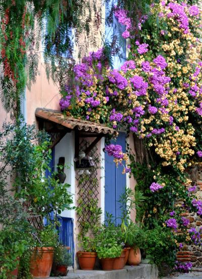 Garden Entry, Provence, France