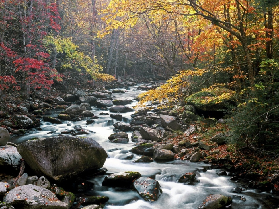 Little River, Tremont, Great Smoky Mountains National Park, Tennessee