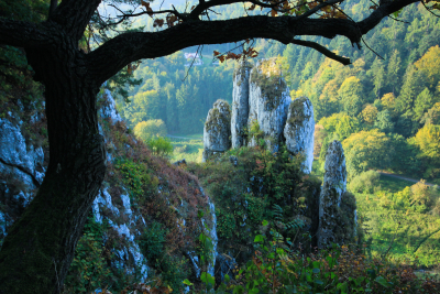 Ojcowski National Park, Poland