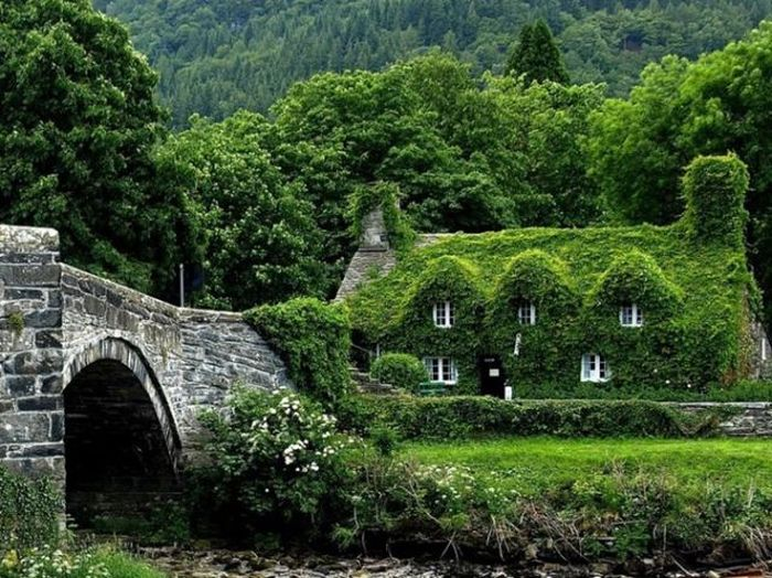 English Cottage, Great Britain
