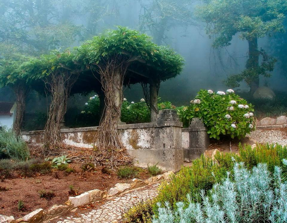Old garden in Sintra, Portugal
