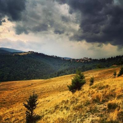 Păltiniș, Transilvania, Romania