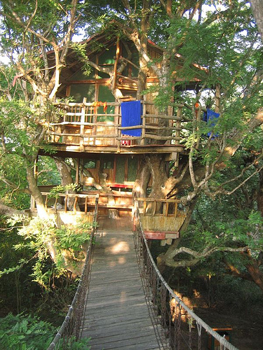Two Story Tree House Costa Rica Photo On Sunsurfer